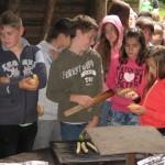 Die neuen 5. Klassen besuchen das Große Holz